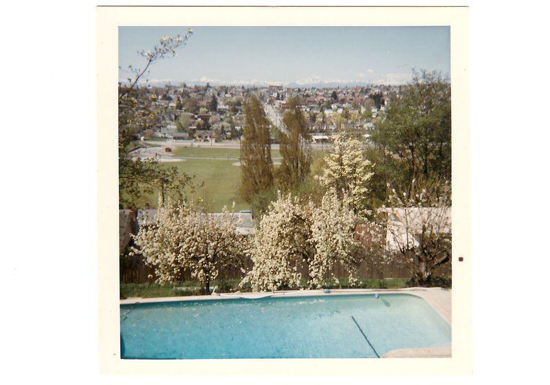1966 pool spring